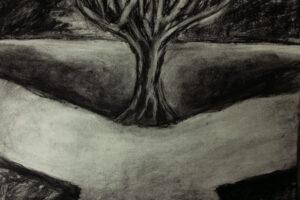 Albero (2013) Carboncino su carta 29,7x21cm